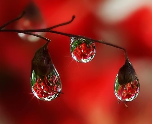 beautiful-rain-drops-wallpapers-with-quotes-8